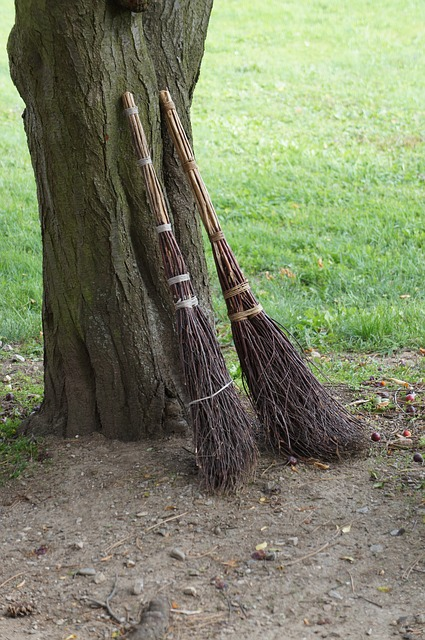 brooms-972304_640.jpg