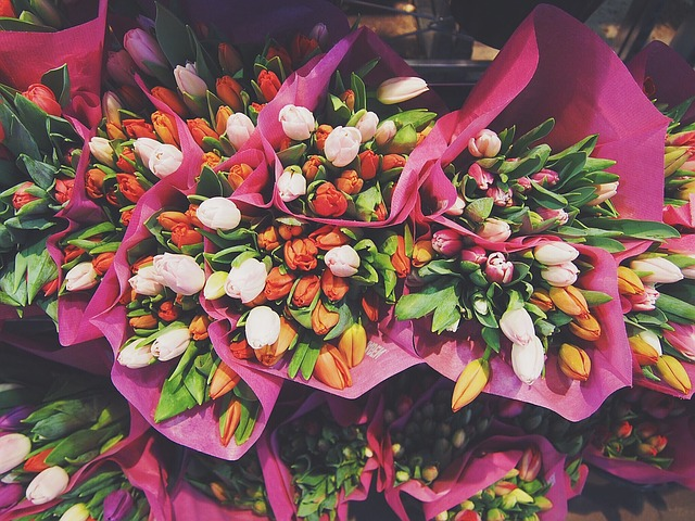 flowers-1245820_640.jpg